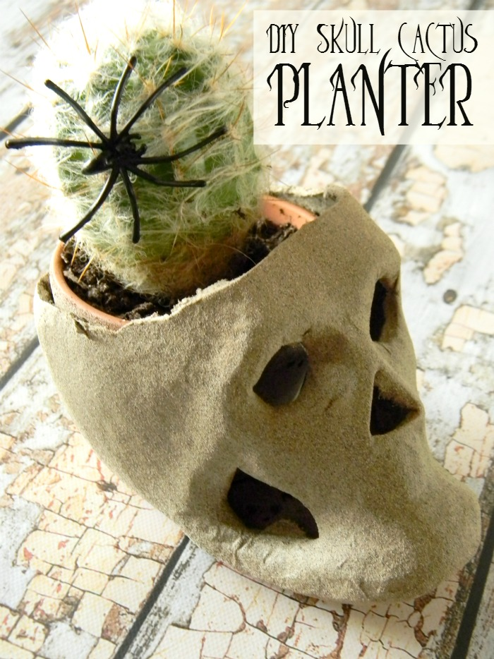 DIY Skull Cactus Planter by Living Lavida Holoka