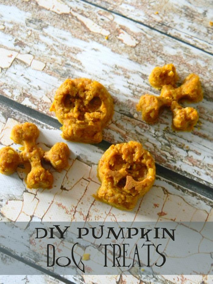 Pumpkin Dog Treats Recipe, shared by Living La Vida Holoka