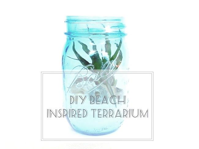 beachterrariumpin