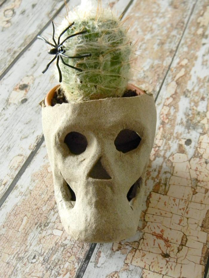 DIY Skull Cactus Planter
