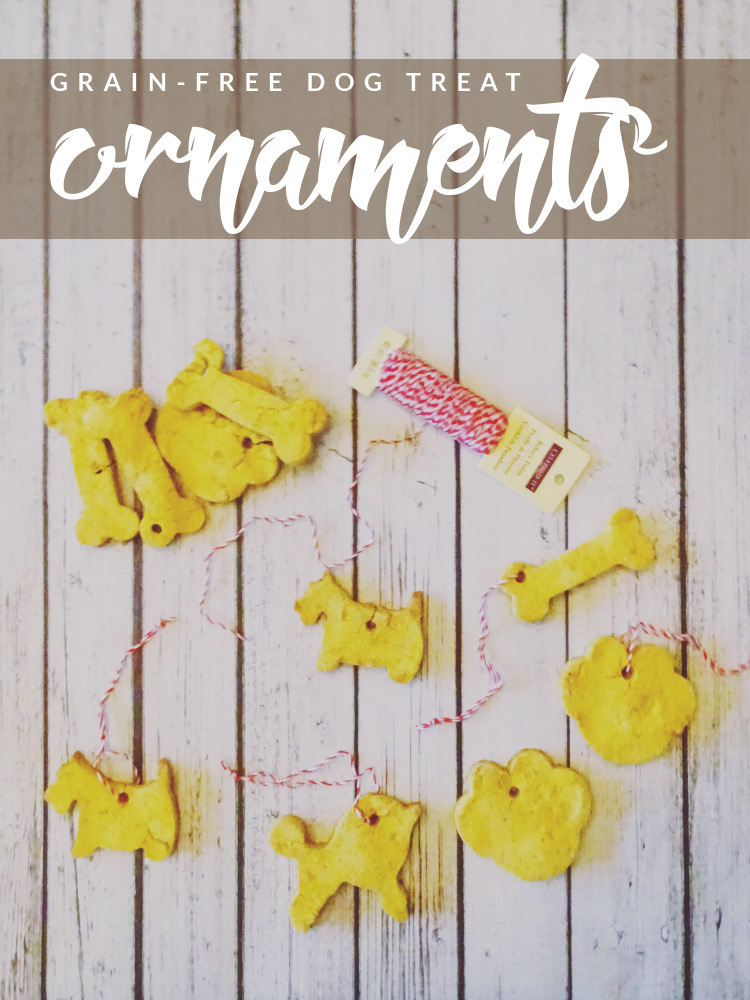 DIY-Grain-Free-Dog-Treat-Ornaments