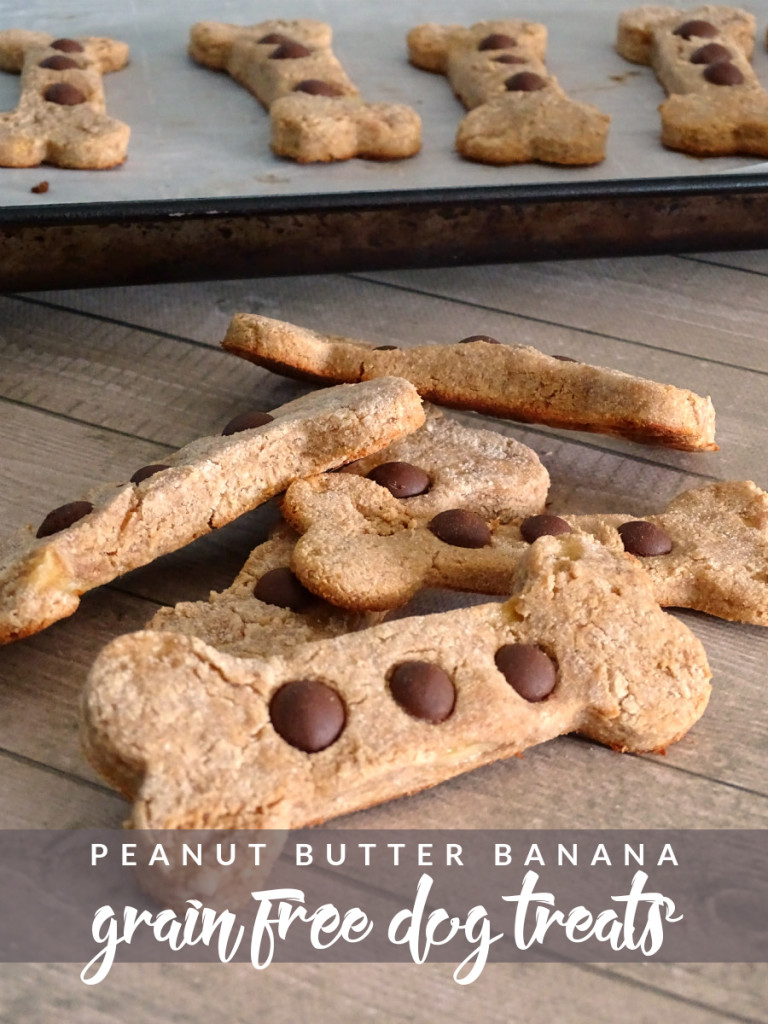 Peanut Butter Banana Grain Free Dog Treats