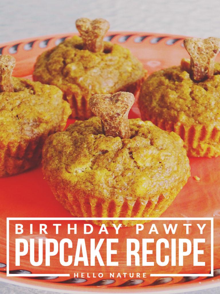 Birthday Pawty Pupcake Recipe