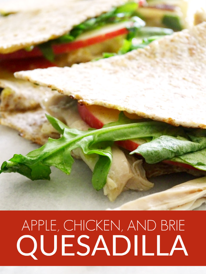 Apple, Chicken, and Brie Quesadilla