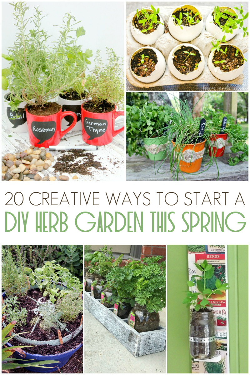 20 Creative Ways To Start A Diy Herb Garden This Spring Living