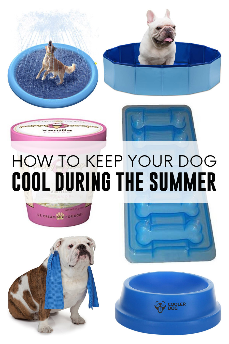 keep your dog cool during the summer